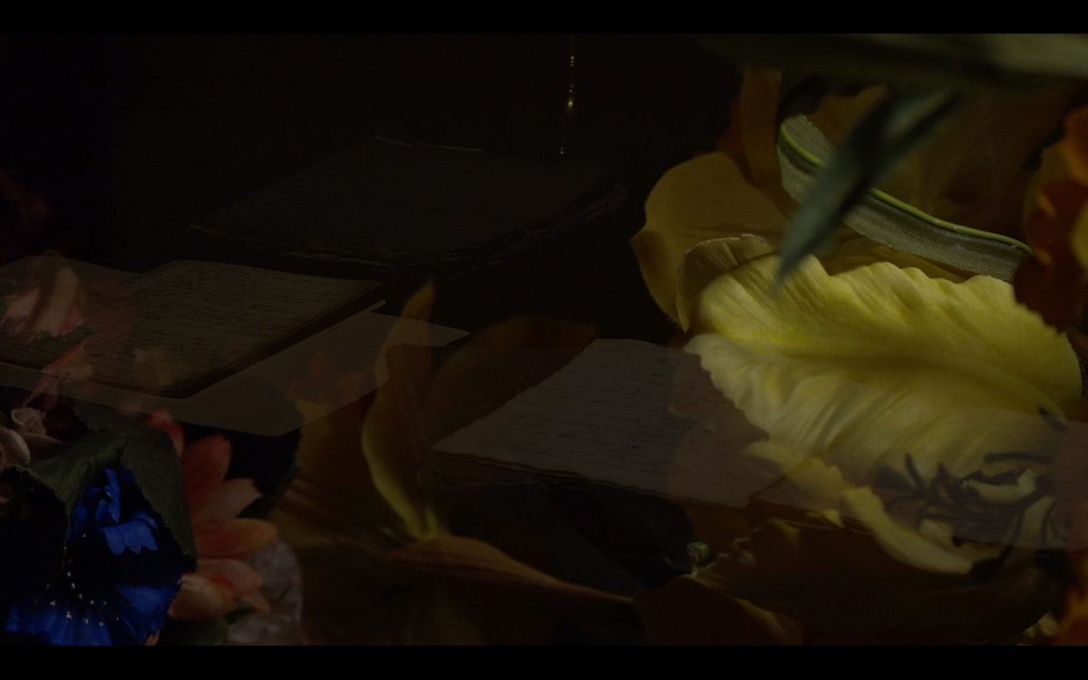 Union Pacific – Julie Born Schwartz - The Invisible Voice, Video still, Union Pacific, 2016