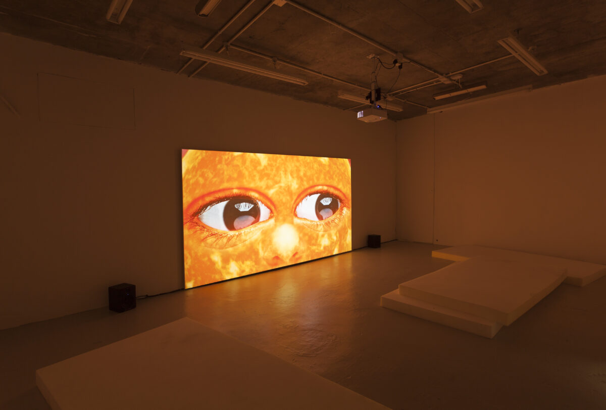 Union Pacific – Agnieszka Polska  - What The Sun Has Seen, 2017, HD Animation, 7 minutes 16 seconds